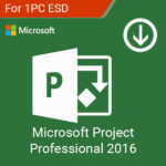 Microsoft Project Professional 2016-esd