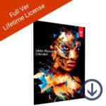 Full Ver Lifetime License-esd-2
