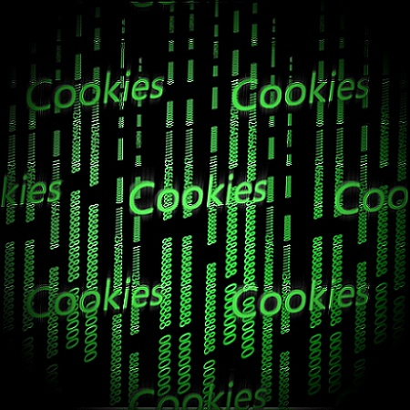 websites use web cookies to remember you so the next time you visit the site, you'll have a better navigtion experience
