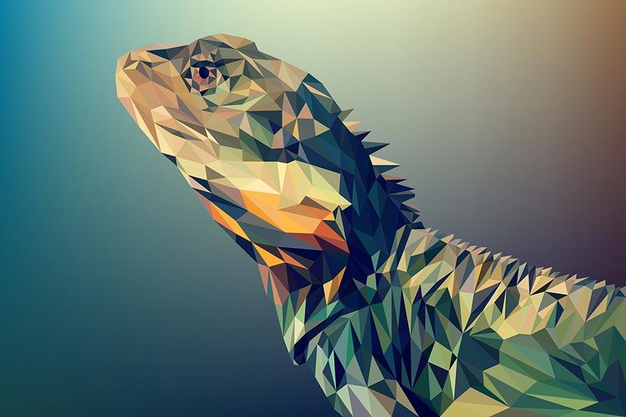 Sample of vector image in adobe illustrator